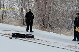An investigation is underway after the remains of a man were found in suitcases near a driveway in Denver