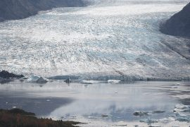 Climate scientists say the world's ice is melting faster than ever